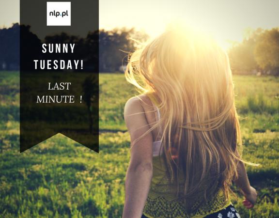 SUNNY TUESDAY!