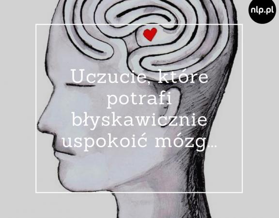 Uczucie, które potrafi błyskawicznie uspokoić mózg...